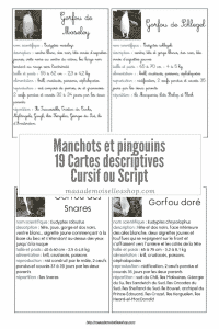 Maaademoiselle A. Shop - Cartes descriptives - Manchots et pingouin