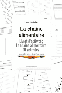 Maaademoiselle A. Shop - Livret d'activités - La chaine alimentaire