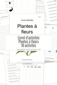 Maaademoiselle A. Shop - Livret d'activités - Plantes à fleurs