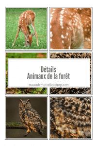 Maaademoiselle A. Shop - Détails - Animaux de la forêt