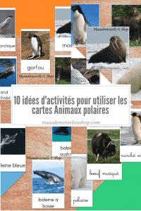 Maaademoiselle A. Shop - 10 idées d'activités pour utiliser les cartes Animaux polaires