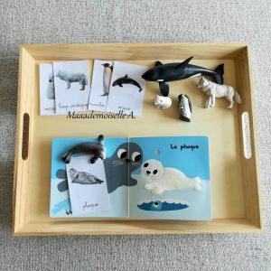 Maaademoiselle A. Shop - 10 idées sur le thème des animaux polaires (activités, jeux, livres) - Jeu d'association : cartes de nomenclature, figurines et livre
