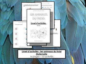 Maaademoiselle A. Shop - 10 idées sur le thème des animaux polaires (activités, jeux, livres) - Livret d'activités : Les animaux du froid